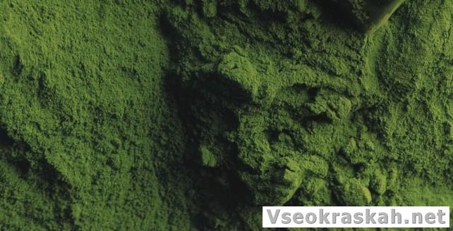 121poroshkovaya kraska i polimernoe pokrytie